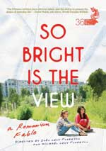 DVD Cover for So Bright is the View