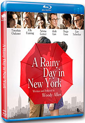 A Rainy Day in New York Blu-Ray Cover