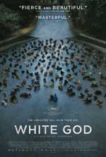 Poster for White Dog