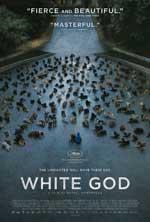 Poster for White Dog