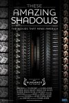 These Amazing Shadows (2011)