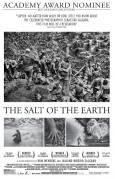 Salt of the Earth, The (2015)
