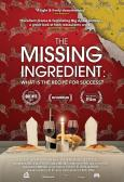 The Missing Ingredient: What is the Recipe for Success? (2015)