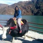 View Dilshana's profile